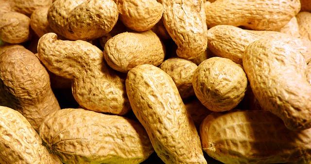 arašídy neloupané