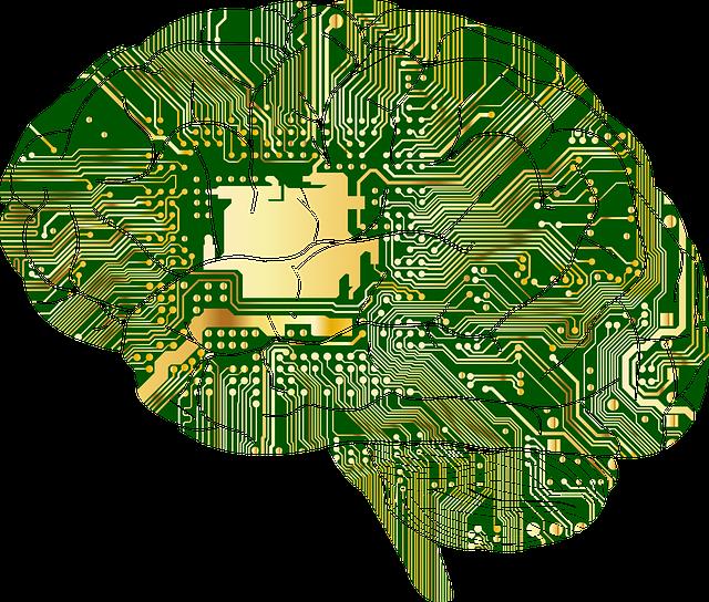 naprogramovaný mozek