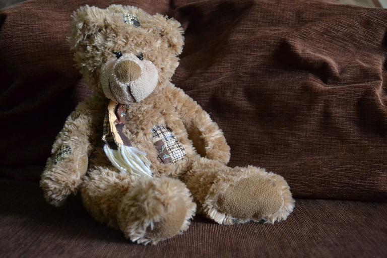 medvídek na křesle